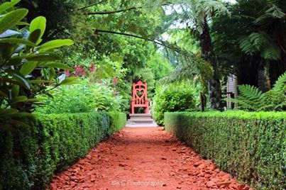The Red Road at Larnach Castle, Dunedin  Taken by KC Photography