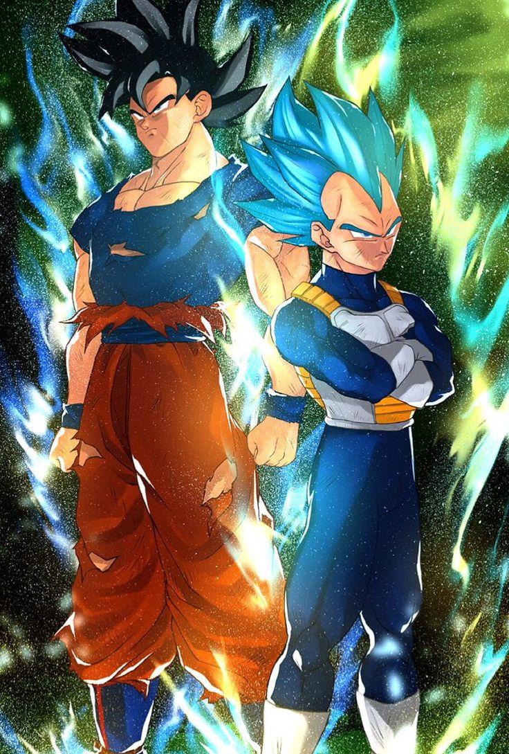 Ultra instinct Goku and Super Saiyan God Vegeta.