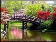 Spring Scenery - Bing Images
