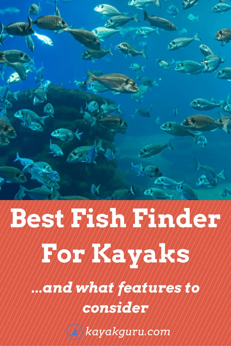 Best 25 kayak fish finder ideas on pinterest kayak for Best fish finder for small boat