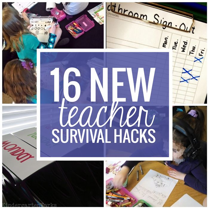 You're a new teacher. You're not in it for the teacher salary. You've headed into the world of teaching for any number of personal reasons and you're pumped. Here are 16 hacks and life-saver ideas to help you keep your head afloat your first year of teaching... and keep your tool belt full of ideas to try.