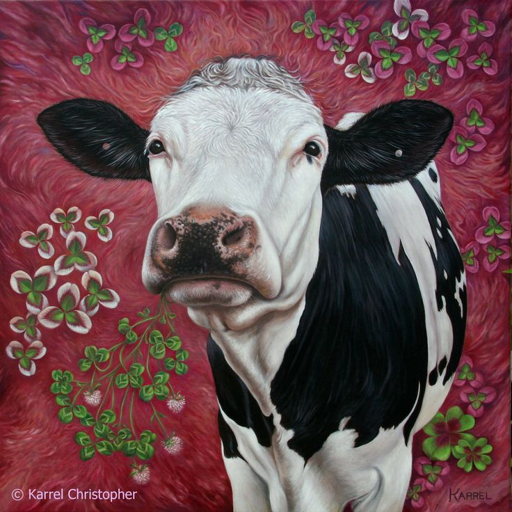 """COW I ~ """"Dreams of Sweet Clover"""" Oil on canvas painting by © Karrel Christopher  ~A portrait of Holstein Friesian Cow ~ measures 23.5'' x 23.5'' inches / 60 x 60 cm http://www.karrelchristopher.com/animal-portraits.html Vegan ART ~ Compassion Education ~ Animal Rights ~ Farm Animal Portraits"""