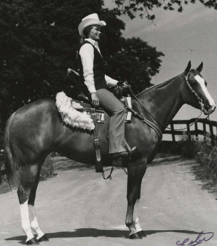 This #quarterhorse is a 1966 sorrel #mare by Flying Bar and out of Miss Ruby Cash. Fly Cash earned her Performance Register of Merit in 1970 and earned Superior Halter, Western Pleasure and Hunter Under Saddle awards. #GuessThatHorse #AQHAProud