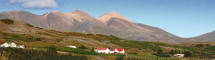 Home - Minna-Mosfell Guesthouse, Iceland
