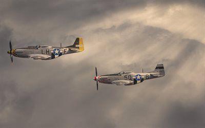 壁紙をダウンロードする 北アメリカ, マスタング, airshow, p-51dマスタング