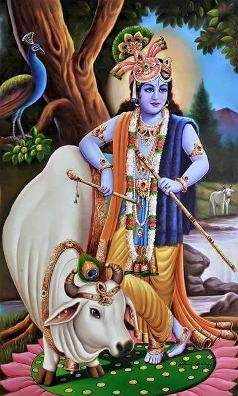 जय उवाच  इत्यर्जुनं वासुदेवस्तथोक्त्वा स्वकं रूपं दर्शयामास भूयः ।  आश्वासयामास च भीतमेनंभूत्वा पुनः सौम्यवपुर्महात्मा ॥   Sanjaya said: After speaking like this to Arjuna, Krishna revealed His four-armed form. And then assuming His pleasant human form, Lord Krishna, the Great One, consoled Arjuna, who was terrified. (11.50)