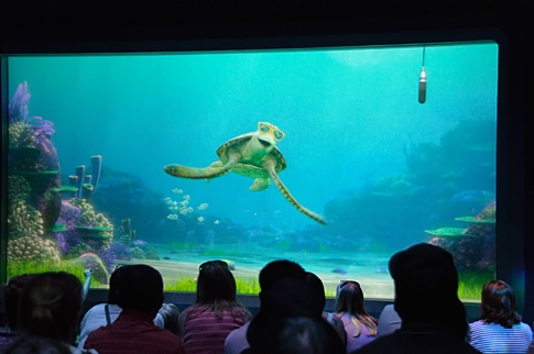 Turtle Talk with Crush (EPCOT)  Guests are admitted to a movie theater-like room featuring what appears to be a large aquarium-style window opening onto an undersea vista.  With the help of the moderator, Crush selects children and adults from the audience and engages them individually in dialogue, asking them questions and responding with quick wit and humor to questions about his life as a sea turtle or any other questions guests choose to ask.