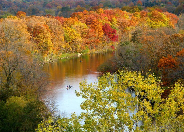 Fall in Ann Arbor, Michigan: Photos
