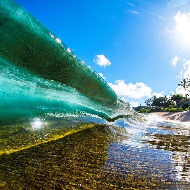 ☀️ #hawaii #clarklittle #Padgram