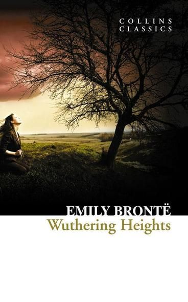 Wuthering Heights by Emily Bronte.  Out on the wily, windy moors, a boy and a girl fall into deep, all-consuming love… Heathcliff's tortuous, obsessive relationship with Cathy in Wuthering Heights is heightened by its unrequited nature and the story's bleak moorland setting.  The tempestuous emotions – passion, vindictiveness, grief – resonate with many (especially during hormonal teenage years).  You may not think Cathy and Heathcliff are nice or pleasant characters, but you won't forget…
