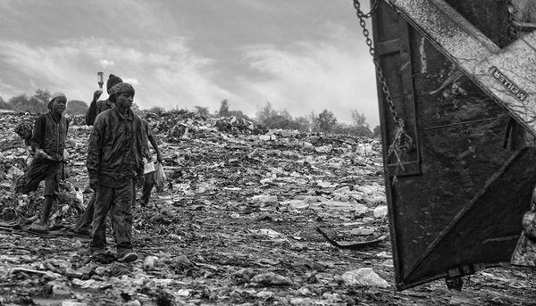Trash Land by Jose Ferreira