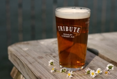tribute ale - Google Search