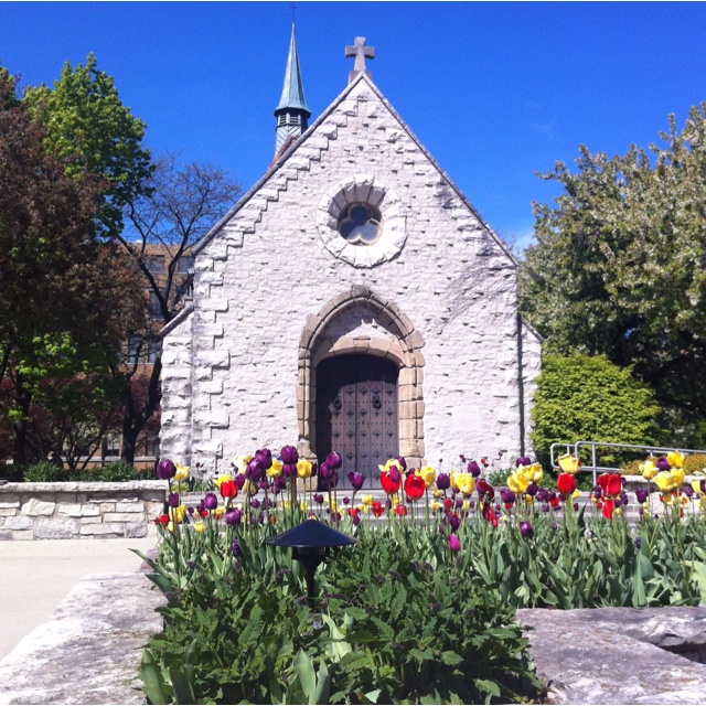 St. Joan of Arc Chapel - Marquette University: Golden Eagles, Favorite Places, School Pride, Joan Of Arc, Mu Golden, Marquette University, Arc Chapel, Apt Window