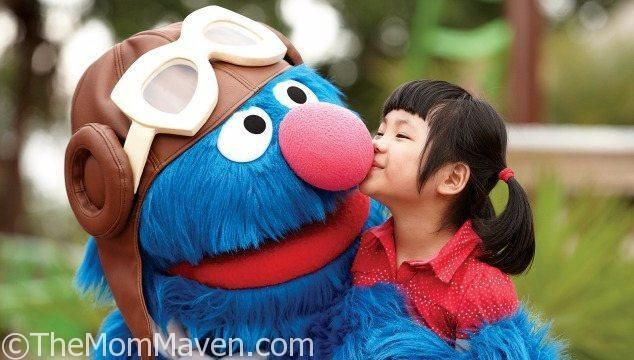 25 Best Ideas About Sesame Street Characters On Pinterest