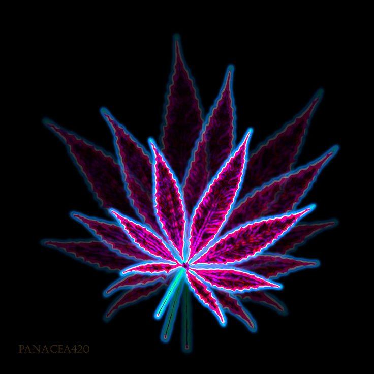 Hemp Cannabis Leaf Vintage Linear Style Stock Vector 321447035 ...