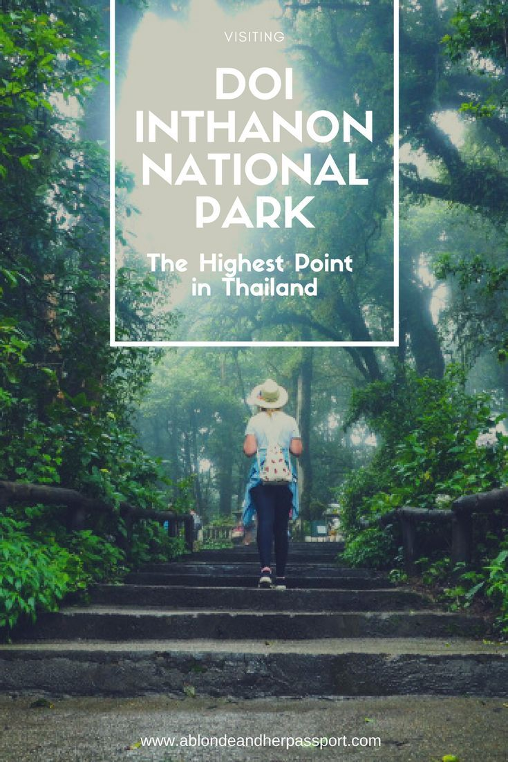 Visiting the highest point in Thailand - Doi Inthanon National Park