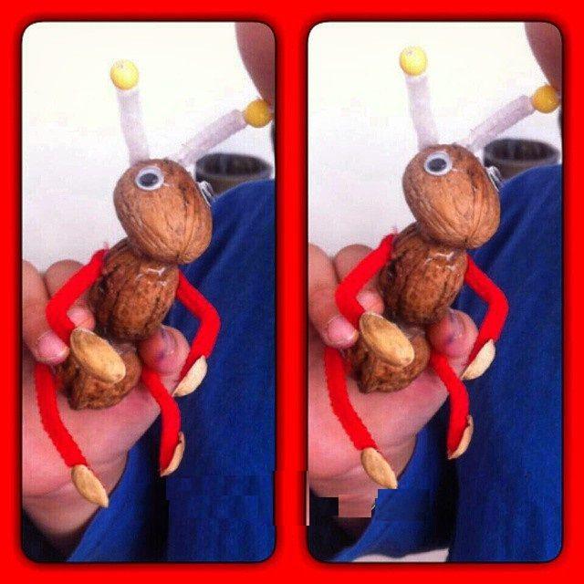 Walnut shell craft ideas   funnycrafts
