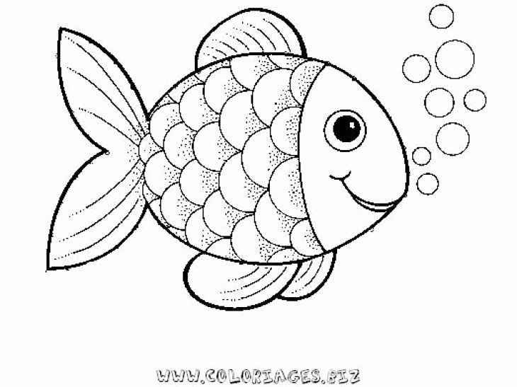 32 Rainbow Fish Coloring Page In 2020 Fish Coloring Page Rainbow Fish Coloring Page Fish Drawings