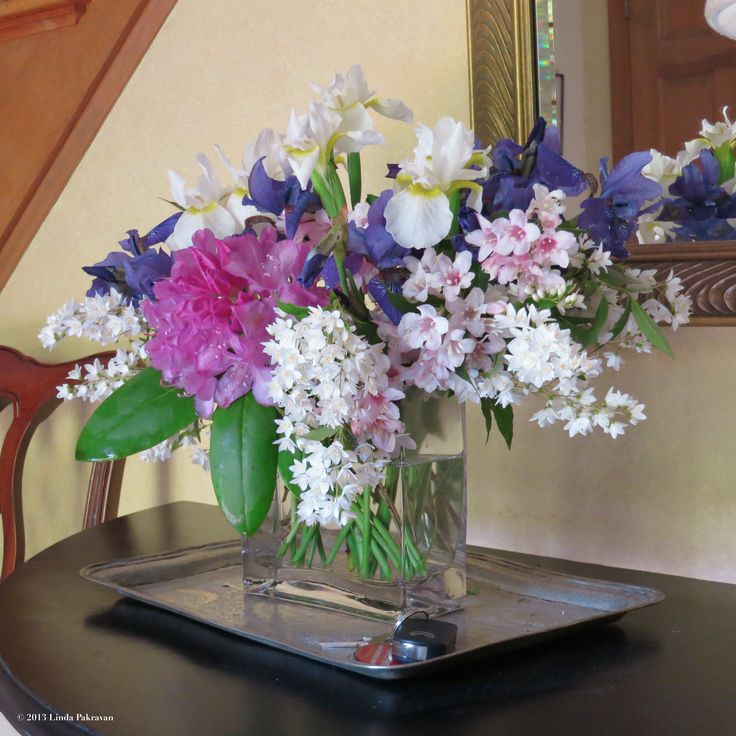 rhododendron, iris, weigelia, deutzia, 2013