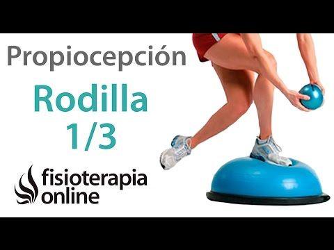 Ejercicios de propiocepción o propioceptivos de rodilla. Nivel inicial. Reforzar la rodilla - YouTube
