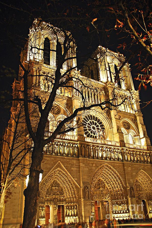Notre Dame De Paris - France. Our tips for 25 Places to Visit in France: http://www.europealacarte.co.uk/blog/2011/12/22/what-to-see-in-france/