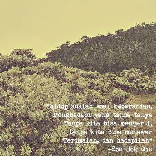 """Mandalawangi-Pangrango"""" puisi oleh Soe Hok #Gie  #indonesia"""