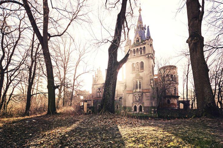 Pałac w Kopicach historią swą sięga XIV wieku, kiedy to był rycerską siedzibą rodu von Borsnitz. Dwukrotnie przzebudowywany - w 1783 r. przez rodzinę von Sierstorpff, w stylu klasycystycznym i w roku 1864 przez  Hansa Ulryka von Schaffgotscha i Joannę Gryczik von Schomberg-Godulla, w stylu neogotyku. Obecnie - ruina, ale wraz z nowym właścicielem pojawiła się nadzieja.