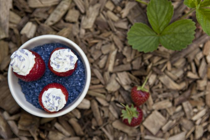 Red, White and Blue Cheesecake-Stuffed Strawberries for the Fourth of July | Food for My Family