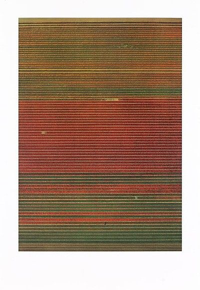 Andreas Gursky - TULPENFELDER / TULIPFIELDS, 2016 . Mixed Media