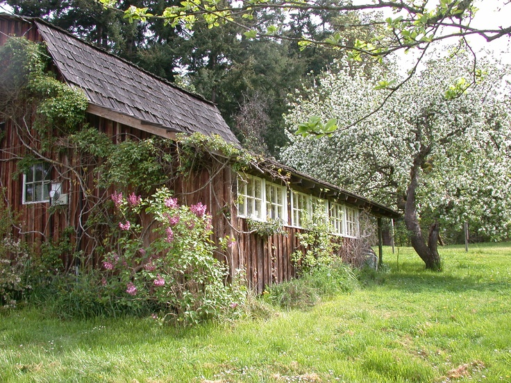 The barn where Saltspring Soapworks started it all.