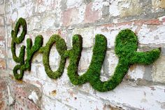 Grow your own moss paint ... http://www.widewalls.ch/moss-graffiti-coolest-diy-project-how-to-make/