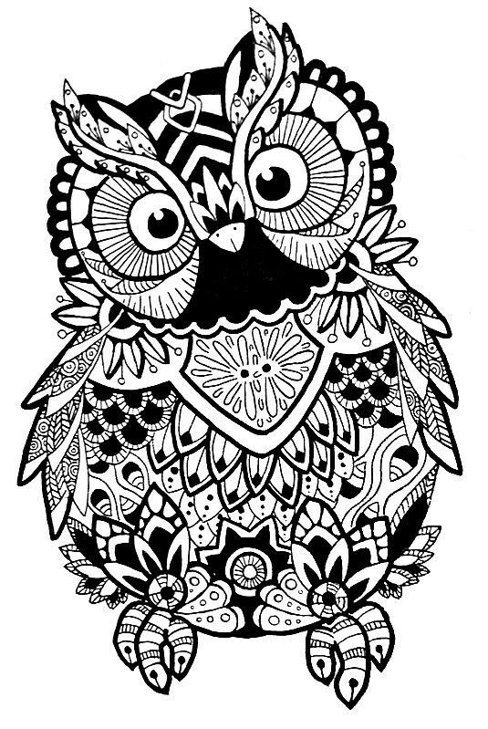 Download Image result for free svg zentangle | Owl coloring pages ...