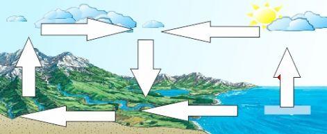 Környezetismeret 01.14. - Programok, feladatok, fontos tudnivalók