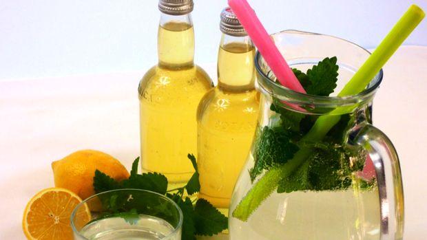 Meduňkový sirup Foto: