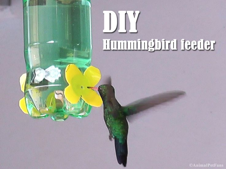 Experimentei fazer um bebedouro bem simples para beija-flores. Utilizei uma garrafa PET, um recipiente de mostarda e cola quente, na verdad...