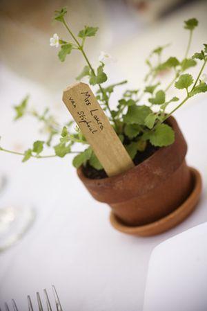 Seedling table names