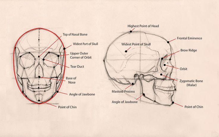 Jon deMartin    Jak nakreslit tváře a hlavy    Umělcova Network