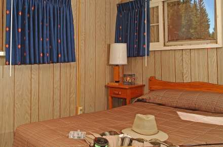 Yellowstone Hotel that allows a dog and has a bathroom. Lake Lodge. Room PictureRMLLPD