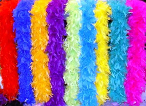 Photo Booth Props Feather Boas