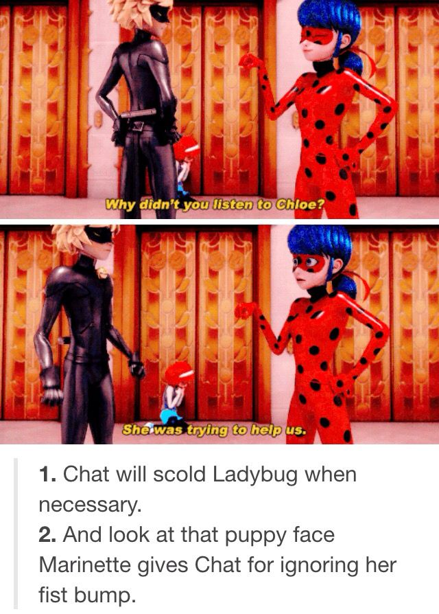 Ladybug is NOT always right. Chat CAN be wiser than her. They really are a balanced team.
