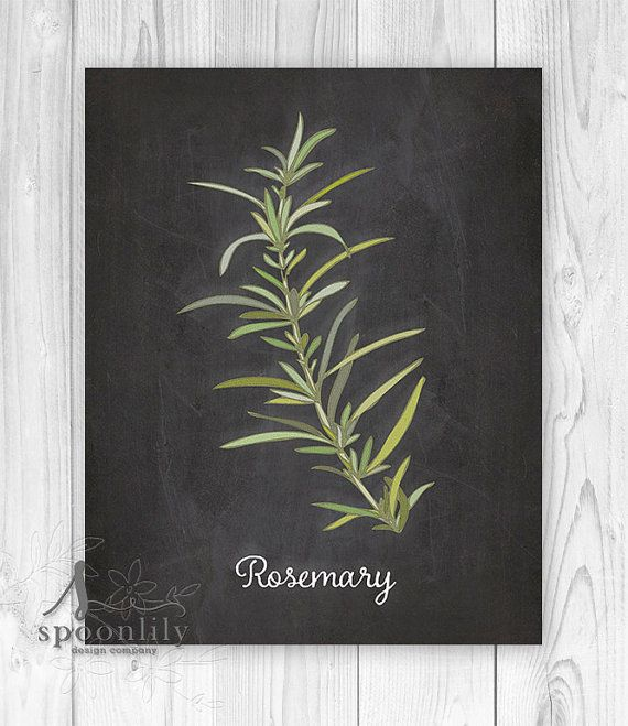 Rosemary herb - Culinary Art - Chalkboard Kitchen Collection - Kitchen Wall Art Print - Kitchen Art - Kitchen Decor