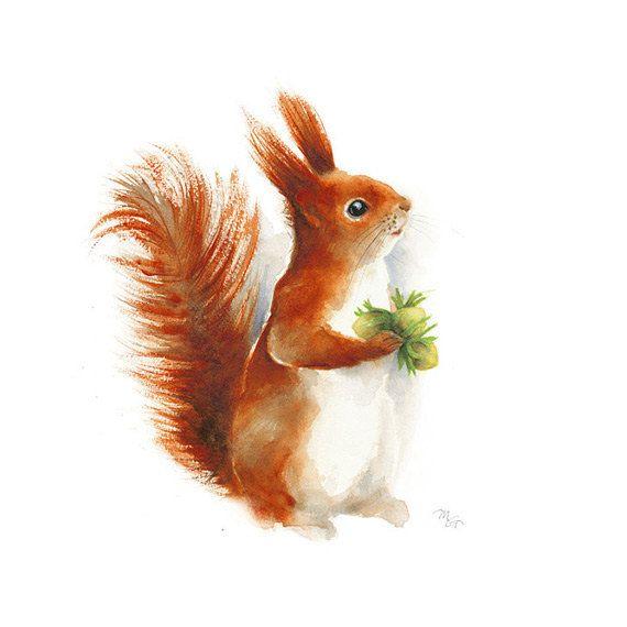 Eichhörnchen-Aquarell – Druck von Aquarell. Kinderzimmer-Kunst Tier-Illustration. Rot, Orange