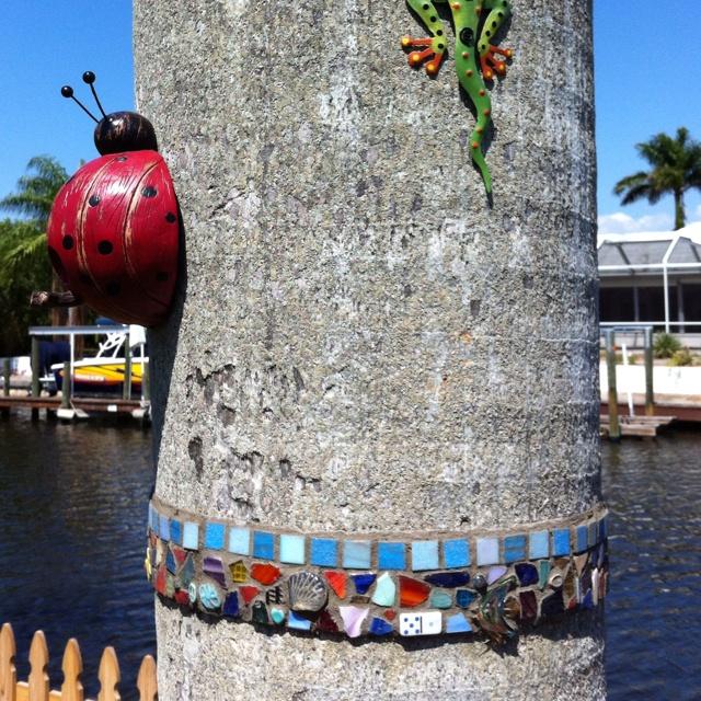 Mosaic band on dead palm tree trunk.: Hmmmm Another Ideas, Bombs Ideas, Mosaics Bands, Mosaics Ideas, Rustic Ideas