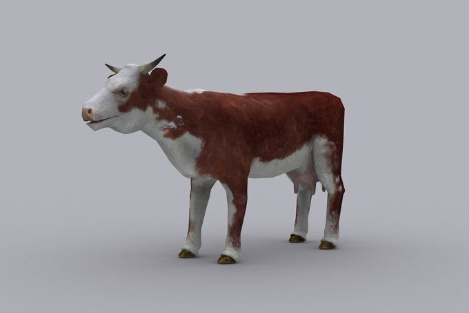 COW fbx only by PROTOFACTOR  on @creativemarket