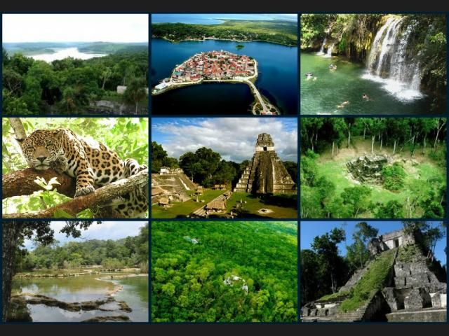 El departamento guatemalteco de Petén, es considerado uno de los pulmones del planeta por sus extensas selvas vírgenes y también conocido como Corazón del Mundo Maya, ya que se han descubierto...
