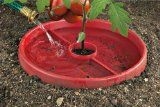 Several tips for deep watering tomatoes-- water wands, tomato savers, aqua cones, watering pipes