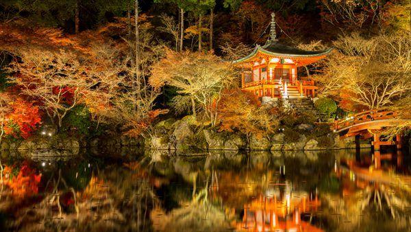 楽天トラベル 京都の宿が選ぶ! 誰にも教えたくない京都の穴場紅葉スポット41選 | 醍醐寺