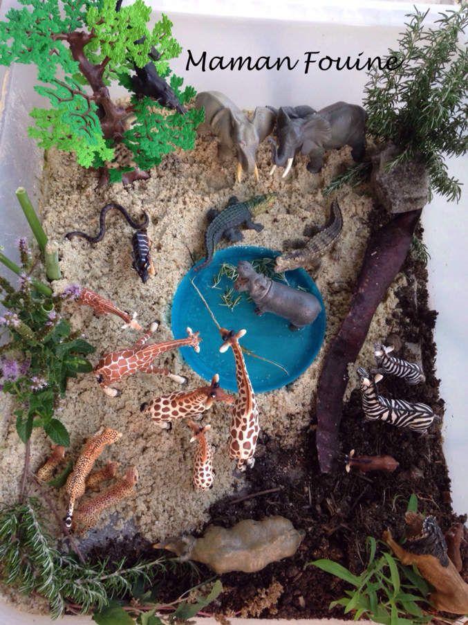 Voici un mini-monde sur la savane, réalisé dans une boîte de rangement en plastique, avec du sable, de la terre, des branchages du jardin, une assiette bleue avec de l'eau, et bien sûr notre collection de figurines Schleich et Papo qui ne cesse de s'...