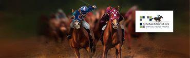 virtual horse game