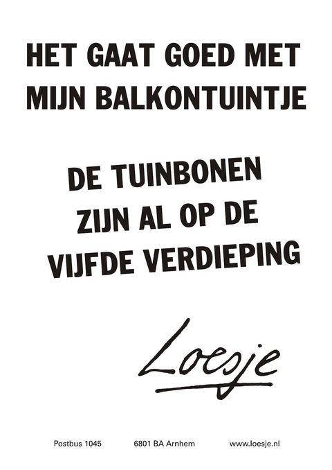 Citaten Loesje Poster : Beste afbeeldingen over loesjes teksten op pinterest